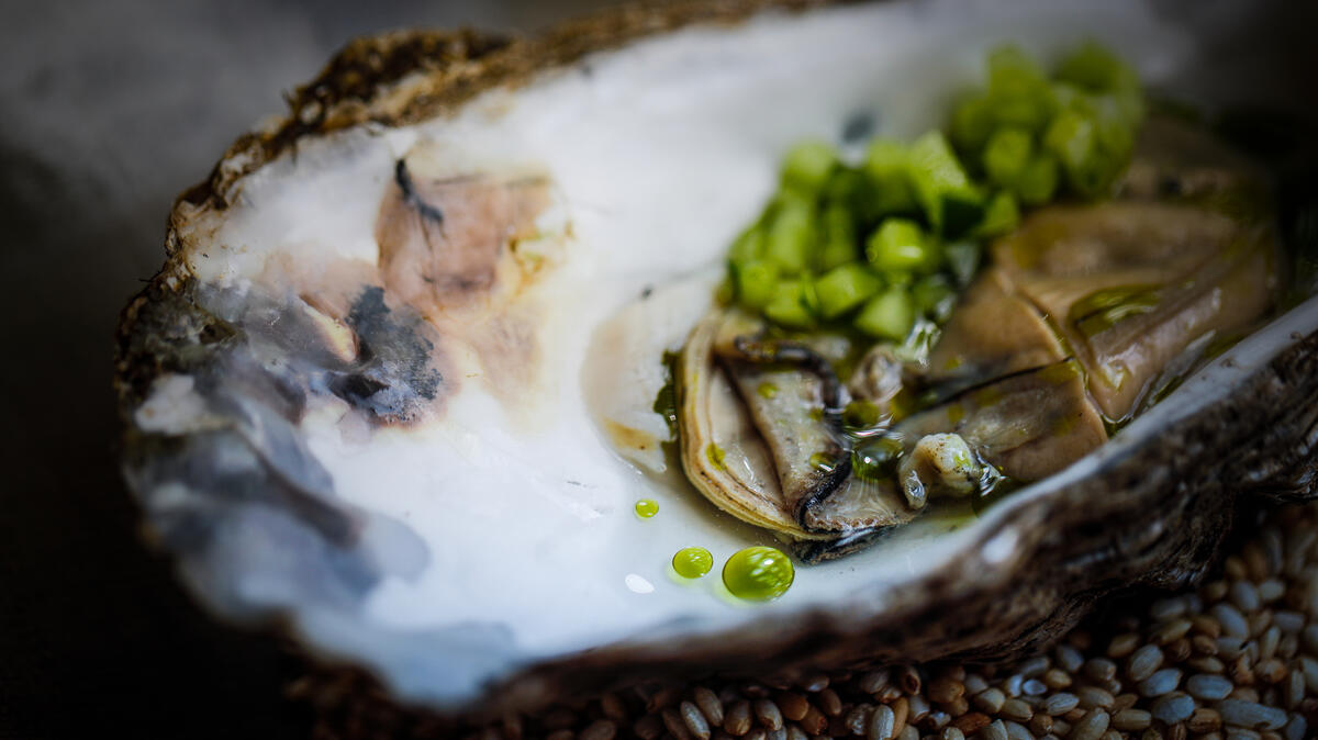 Colchester rock oyster + cucumber